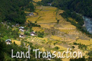 Land Transaction
